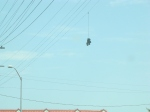 I have no idea what this is but it was hanging over the intersection at Lincoln & Venice.  Weird.