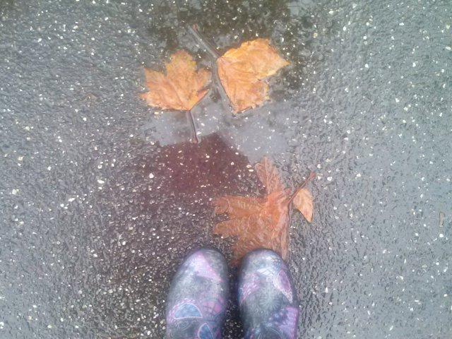 Rainy days and Mondays…
